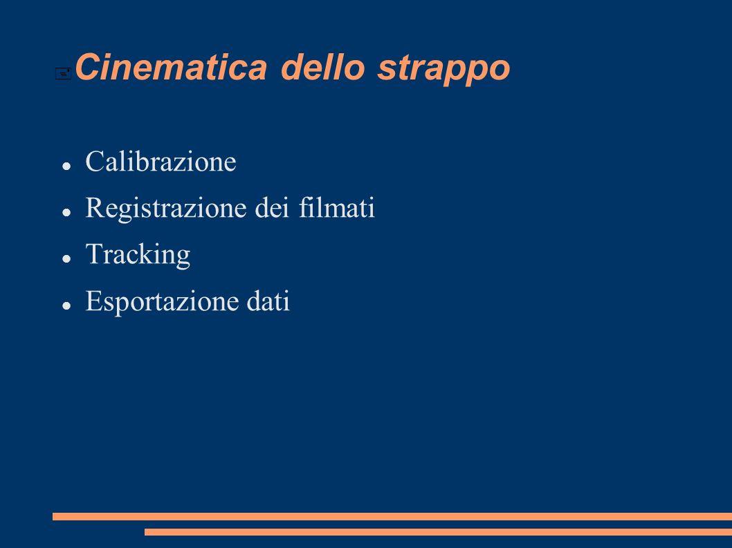 Cinematica dello strappo Calibrazione Registrazione dei filmati Tracking Esportazione dati