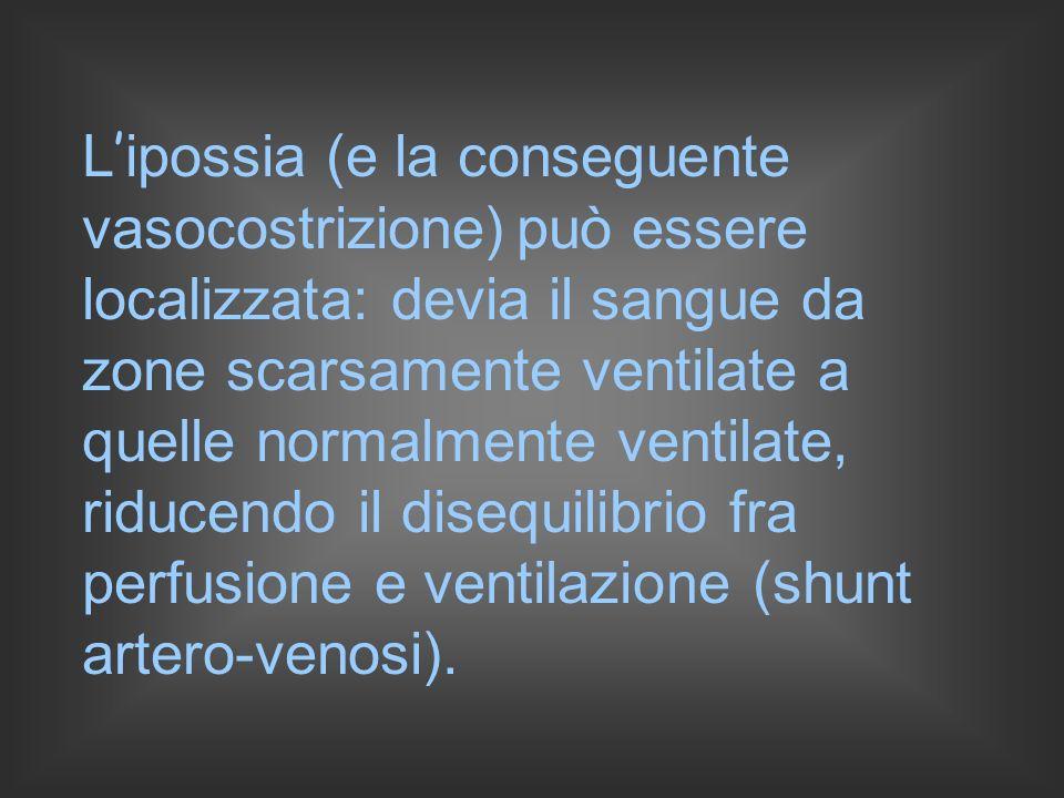 L ipossia (e la conseguente vasocostrizione) può essere localizzata: devia il sangue da zone scarsamente ventilate a quelle normalmente ventilate, riducendo il disequilibrio fra perfusione e ventilazione (shunt artero-venosi).
