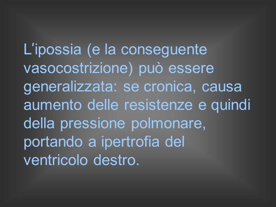 L ipossia (e la conseguente vasocostrizione) può essere generalizzata: se cronica, causa aumento delle resistenze e quindi della pressione polmonare, portando a ipertrofia del ventricolo destro.