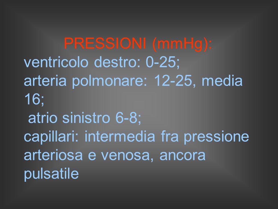 PRESSIONI (mmHg): ventricolo destro: 0-25; arteria polmonare: 12-25, media 16; atrio sinistro 6-8; capillari: intermedia fra pressione arteriosa e venosa, ancora pulsatile