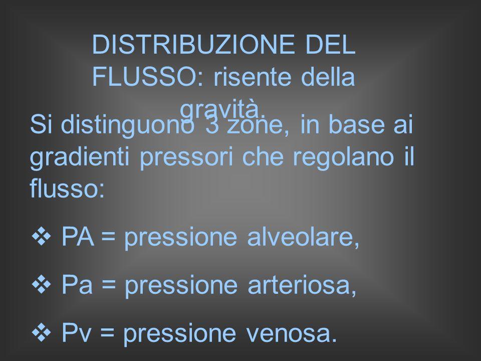 Zona I: PA > Pa > Pv: i capillari sono chiusi; Zona II: Pa > PA > Pv : il flusso dipende dalle fasi della respirazione; Zona III: Pa > Pv > PA : il flusso segue il regime di Poiseuille