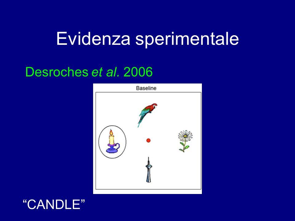 Comprensione Stein (1984) Interpretazione delle frasi passive: (1)Gianni ha baciato Maria (2)Gianni è stato baciato da Maria Bambini non dislessici: fino a 5-6 anni tendono ad interpretare (50%) (2) come (1).