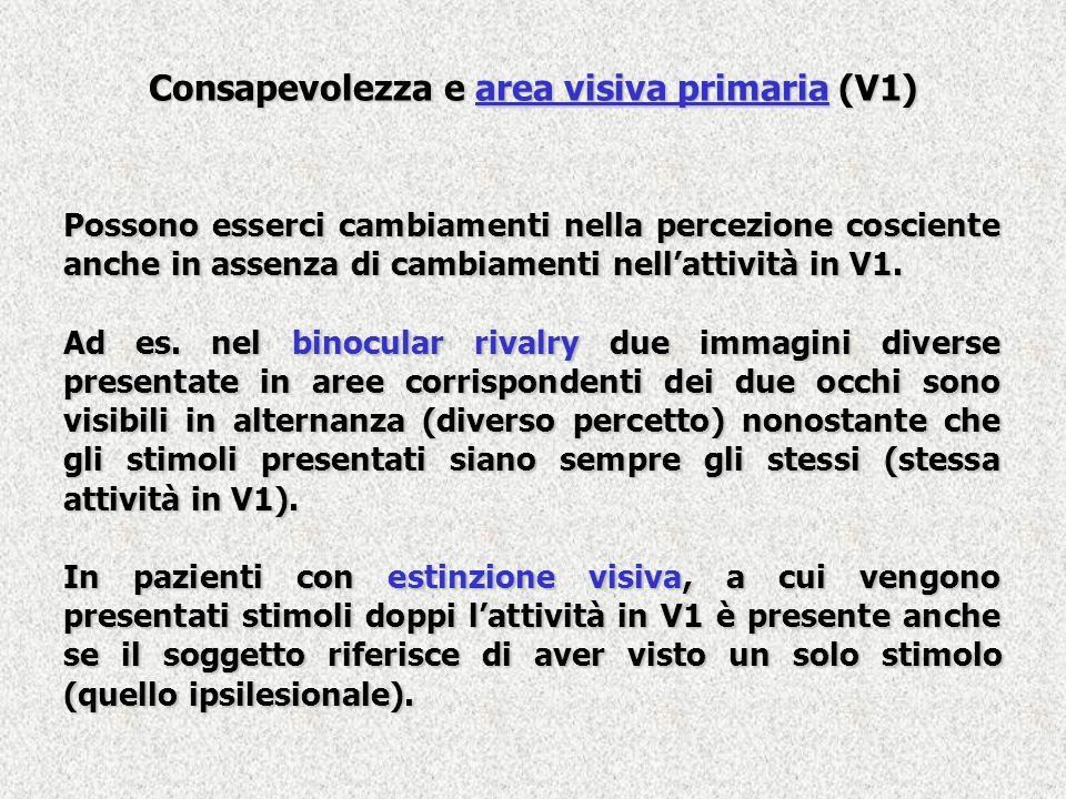 Consapevolezza e area visiva primaria (V1) Possono esserci cambiamenti nella percezione cosciente anche in assenza di cambiamenti nellattività in V1.