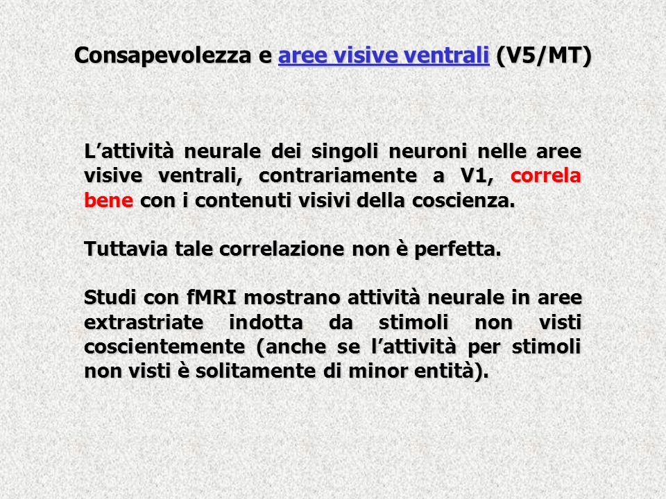 Consapevolezza e aree visive ventrali (V5/MT) Lattività neurale dei singoli neuroni nelle aree visive ventrali, contrariamente a V1, correla bene con
