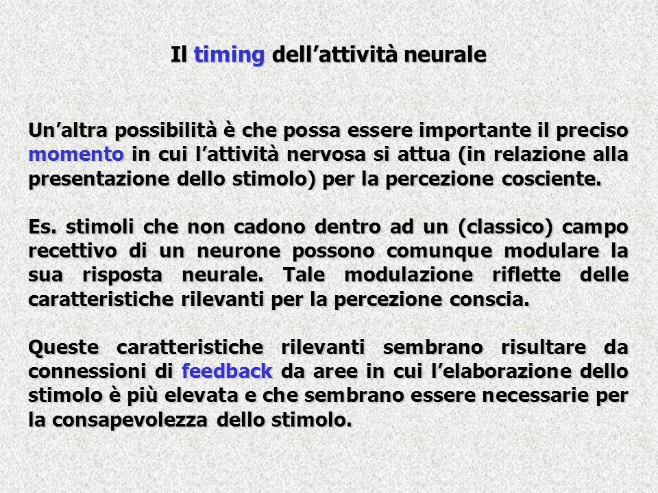 Il timing dellattività neurale Unaltra possibilità è che possa essere importante il preciso momento in cui lattività nervosa si attua (in relazione al