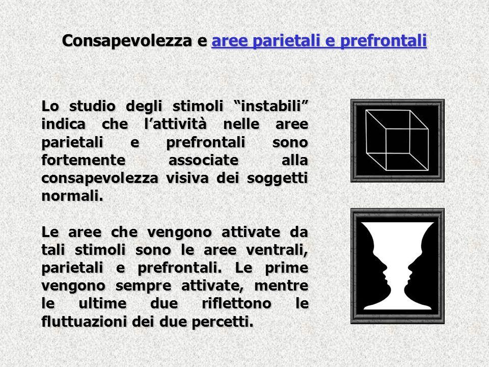 Consapevolezza e aree parietali e prefrontali Lo studio degli stimoli instabili indica che lattività nelle aree parietali e prefrontali sono fortement
