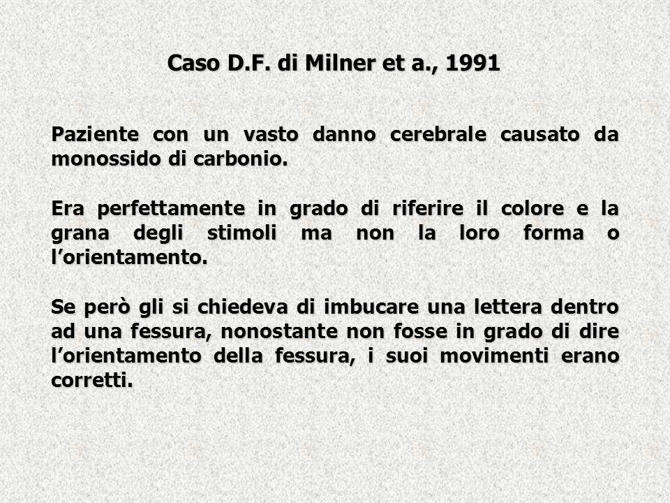 Caso D.F. di Milner et a., 1991 Paziente con un vasto danno cerebrale causato da monossido di carbonio. Era perfettamente in grado di riferire il colo