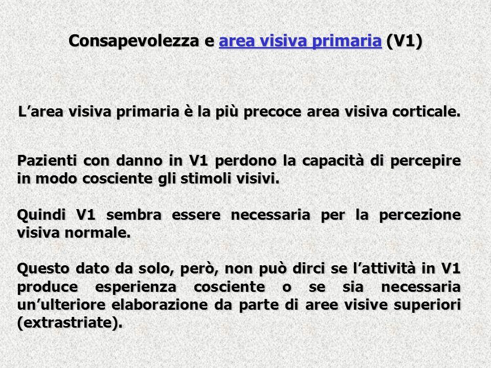 Blindsight Quando vengono presentati degli stimoli visivi a soggetti con blindsight riferiscono di non percepire nulla.