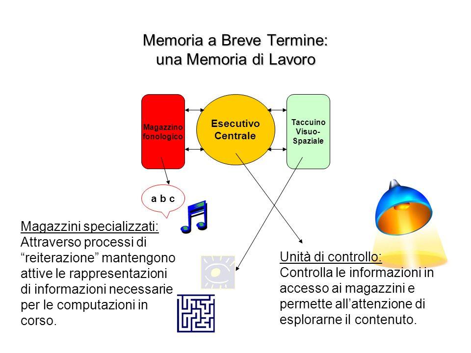 Memoria a Breve Termine: una Memoria di Lavoro Esecutivo Centrale Magazzino fonologico Taccuino Visuo- Spaziale Unità di controllo: Controlla le informazioni in accesso ai magazzini e permette allattenzione di esplorarne il contenuto.