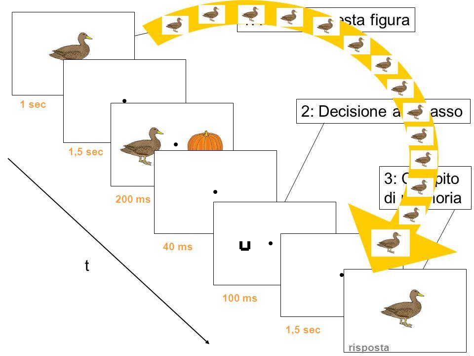 t 1: Ricorda questa figura 1 sec 2: Decisione alto/basso 1,5 sec 200 ms40 ms100 ms1,5 sec 3: Compito di memoria risposta