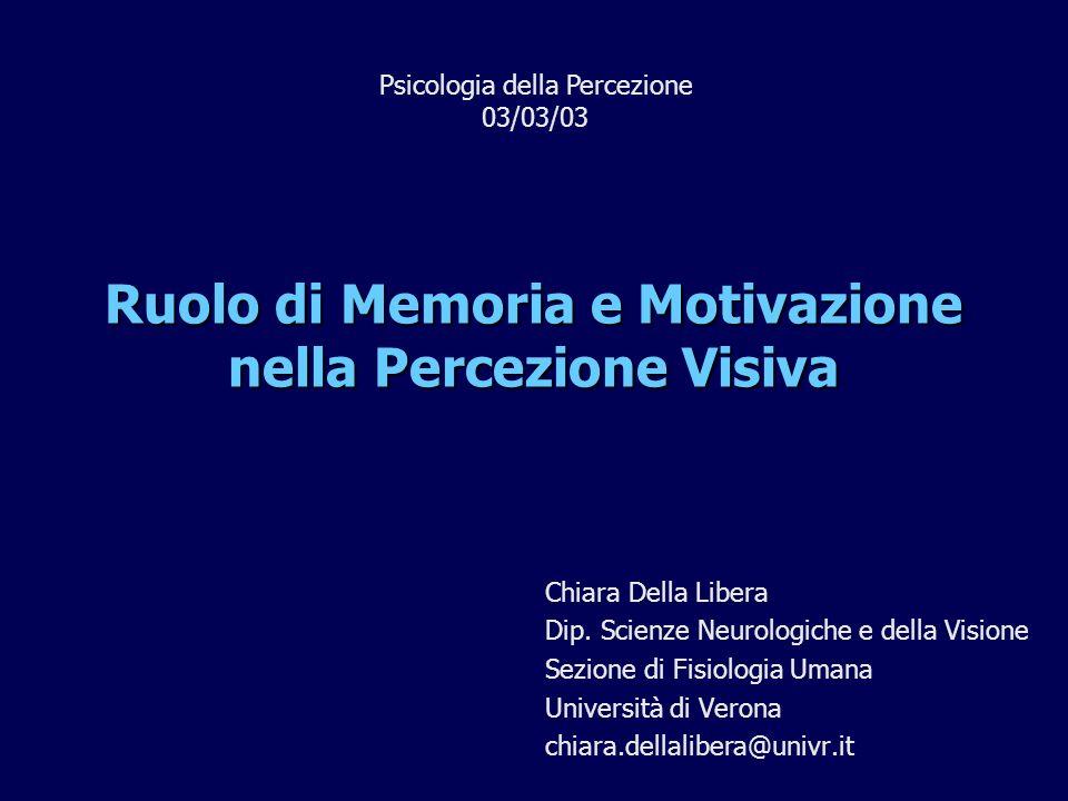 1)Memoria e Visione A) Scoprire le regolarità C) Memoria a lungo termine 2)Motivazione e Visione A) Emozioni B) Memoria di lavoro B) Motivazioni
