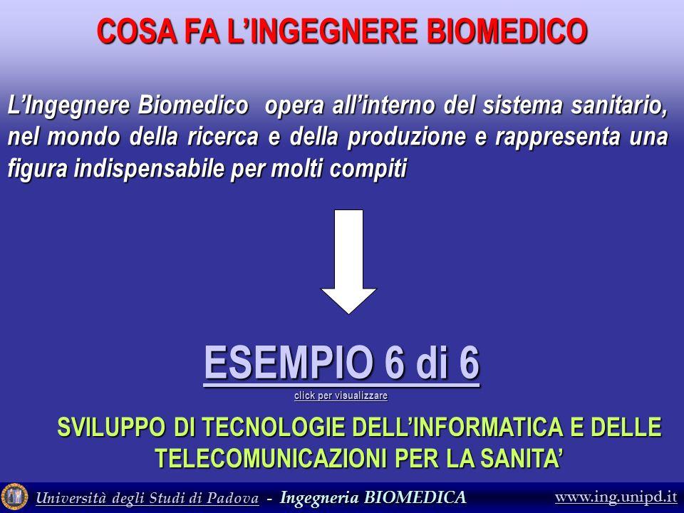 Università degli Studi di PadovaUniversità degli Studi di Padova - Ingegneria BIOMEDICA Università degli Studi di Padova www.ing.unipd.it LIngegnere B