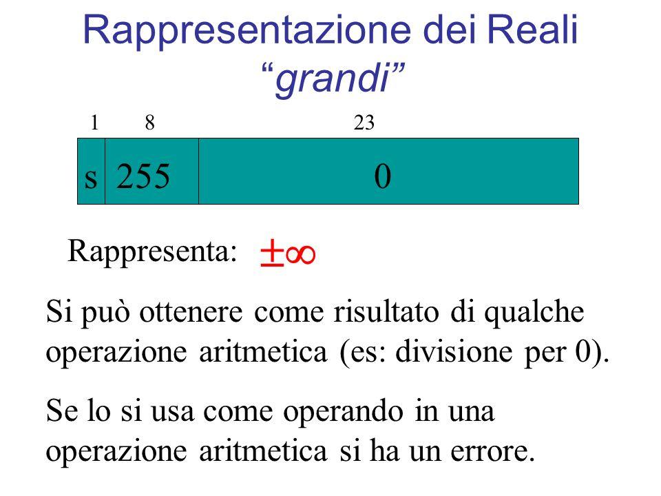 Rappresentazione dei Realigrandi 1 8 23 s 255 0 Rappresenta: Si può ottenere come risultato di qualche operazione aritmetica (es: divisione per 0). Se