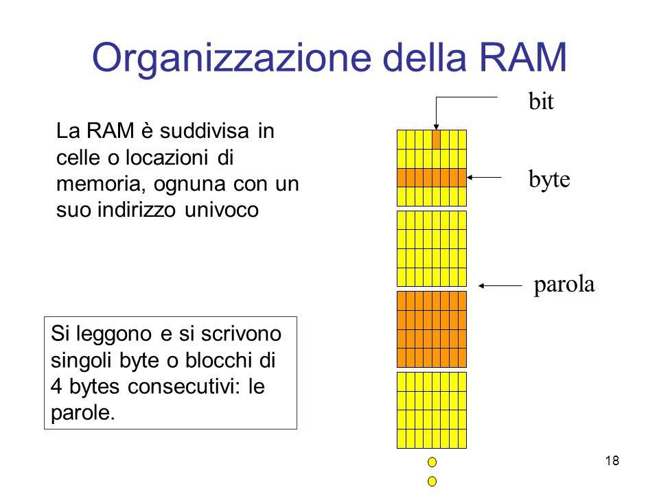 18 Organizzazione della RAM La RAM è suddivisa in celle o locazioni di memoria, ognuna con un suo indirizzo univoco byte Si leggono e si scrivono sing