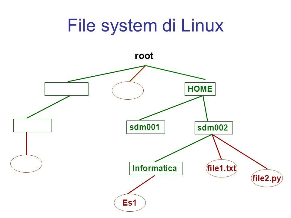 Visualizzare il contenuto di un file: less Il comando: >> less nome_file stampa a schermo il contenuto del file nome_file e permette di scorrere la visualizzazione utilizzando i tasti freccia in alto e freccia in basso.