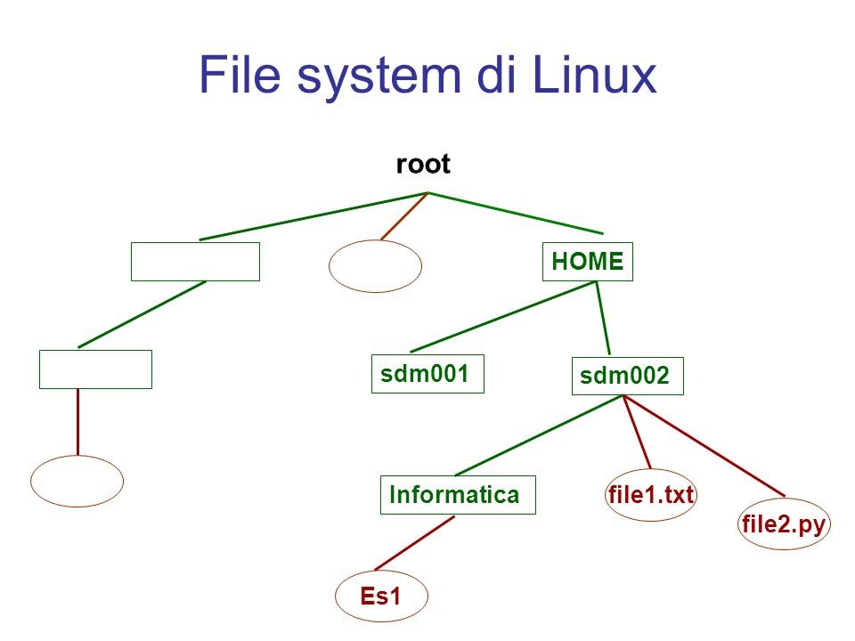 File system di Linux root HOME sdm001 sdm002 Informatica Es1 file1.txt file2.py