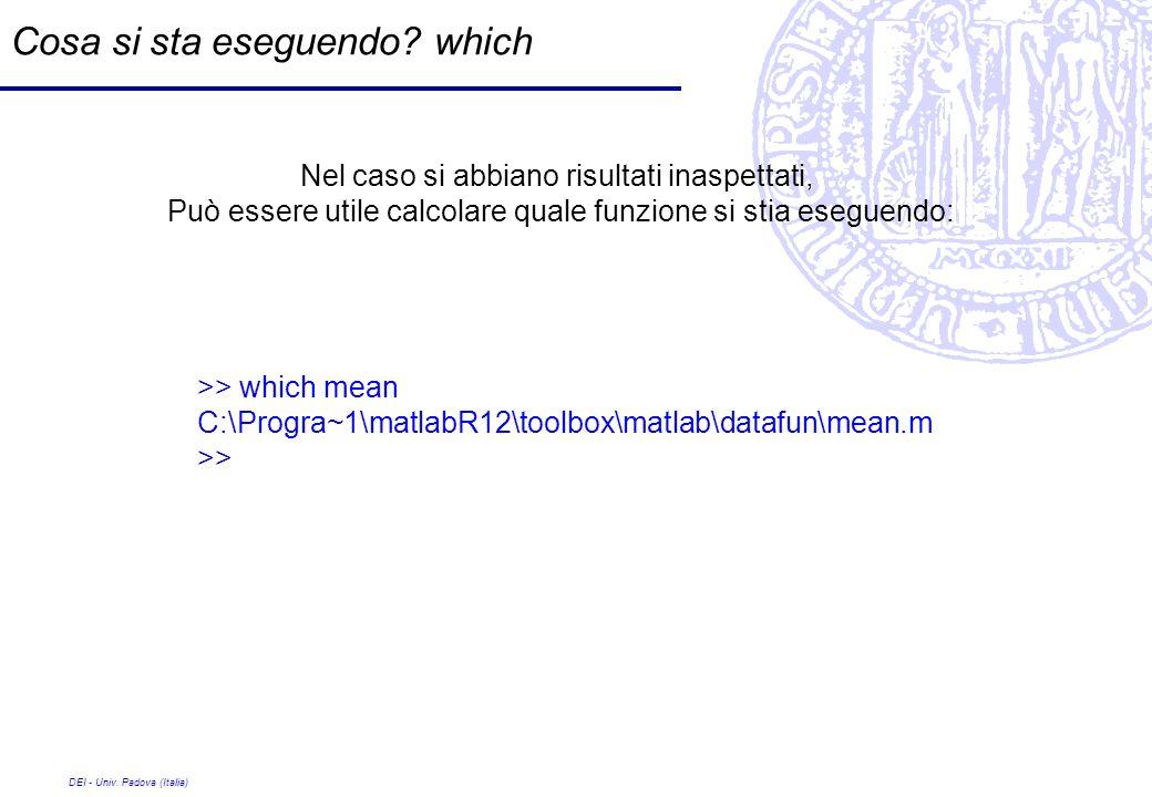 DEI - Univ. Padova (Italia) Cosa si sta eseguendo? which Nel caso si abbiano risultati inaspettati, Può essere utile calcolare quale funzione si stia