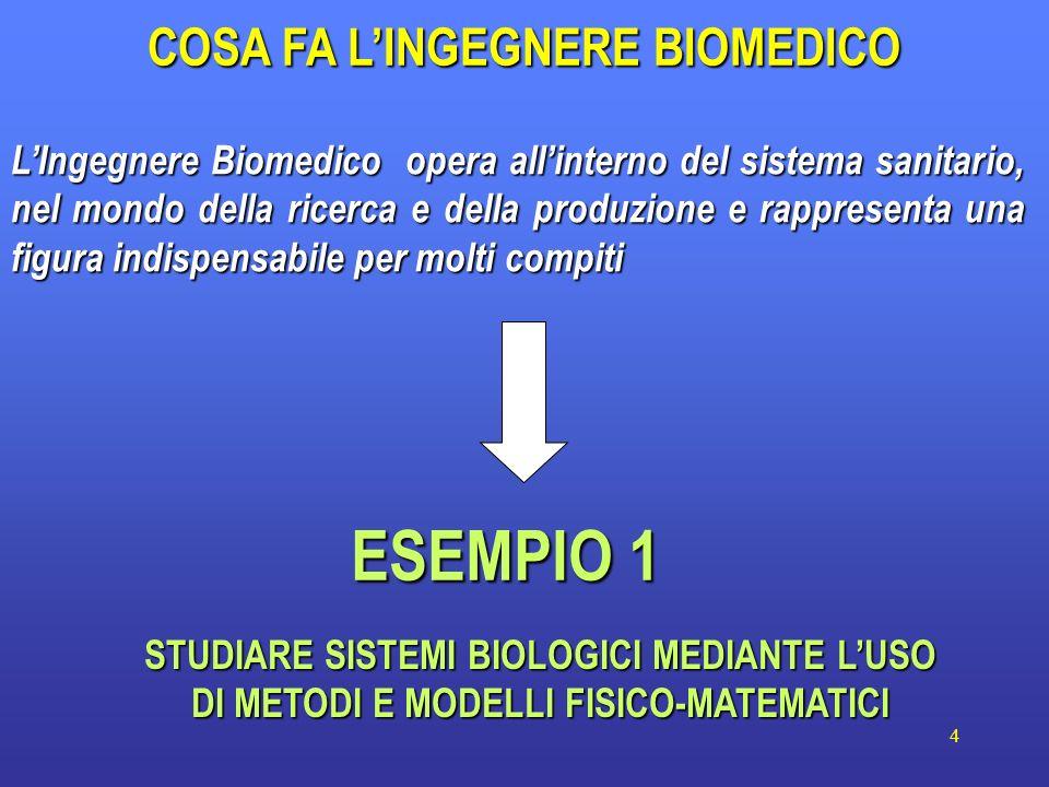4 LIngegnere Biomedico opera allinterno del sistema sanitario, nel mondo della ricerca e della produzione e rappresenta una figura indispensabile per