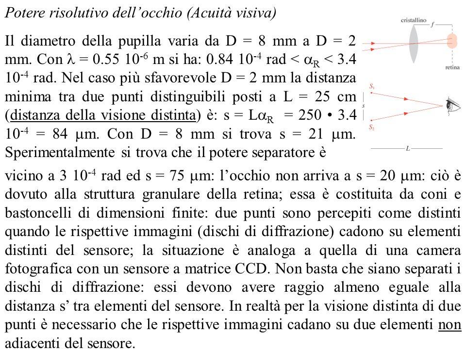 Potere risolutivo dellocchio (Acuità visiva) Il diametro della pupilla varia da D = 8 mm a D = 2 mm. Con = 0.55 10 -6 m si ha: 0.84 10 -4 rad < R < 3.