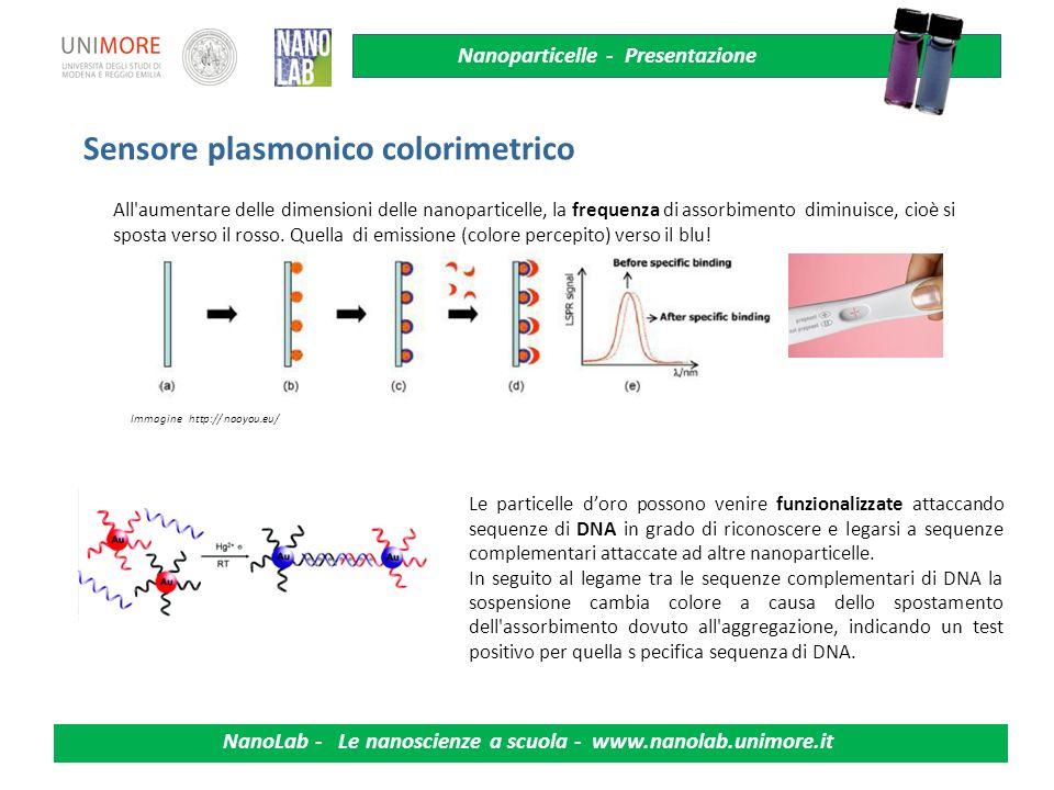 Nanoparticelle - Presentazione NanoLab - Le nanoscienze a scuola - www.nanolab.unimore.it Le particelle doro possono venire funzionalizzate attaccando sequenze di DNA in grado di riconoscere e legarsi a sequenze complementari attaccate ad altre nanoparticelle.