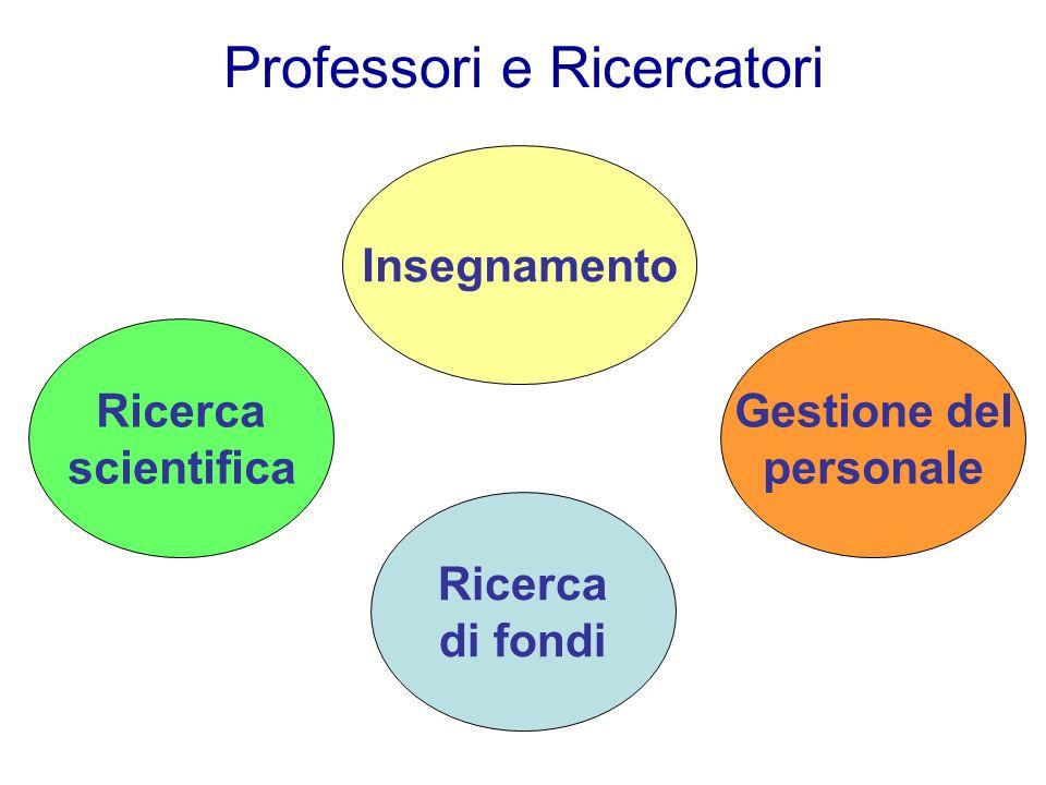Professori e Ricercatori Ricerca scientifica Insegnamento Ricerca di fondi Gestione del personale