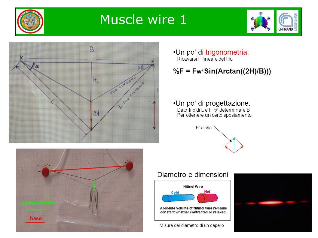 Muscle wire 1 Diametro e dimensioni Misura del diametro di un capello Un po di trigonometria: Ricavarsi F lineare del filo %F = F w* Sin(Arctan((2H)/B))) Un po di progettazione: Dato filo di L e F determinare B Per ottenere un certo spostamento E alpha