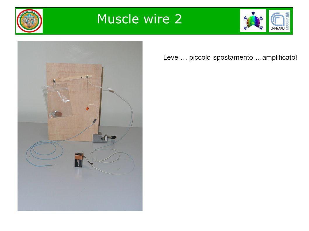 Muscle wire 2 Leve … piccolo spostamento …amplificato!