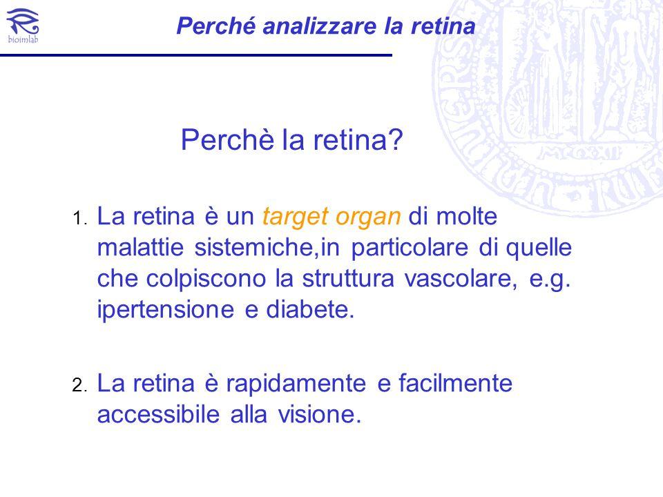 Perché analizzare la retina 1. La retina è un target organ di molte malattie sistemiche,in particolare di quelle che colpiscono la struttura vascolare