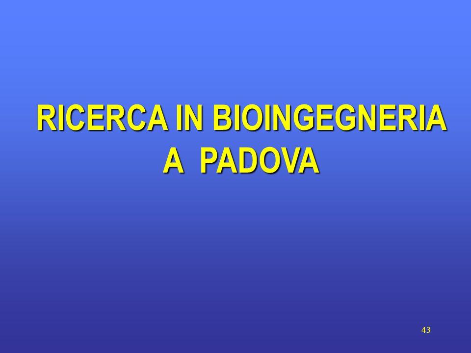 43 RICERCA IN BIOINGEGNERIA A PADOVA