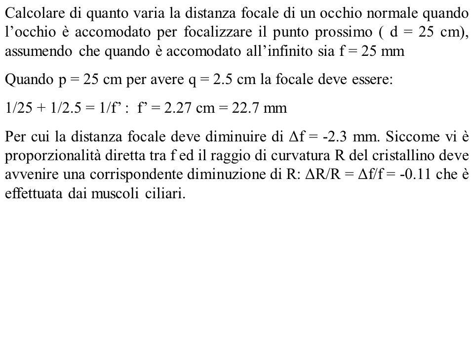 Calcolare di quanto varia la distanza focale di un occhio normale quando locchio è accomodato per focalizzare il punto prossimo ( d = 25 cm), assumend