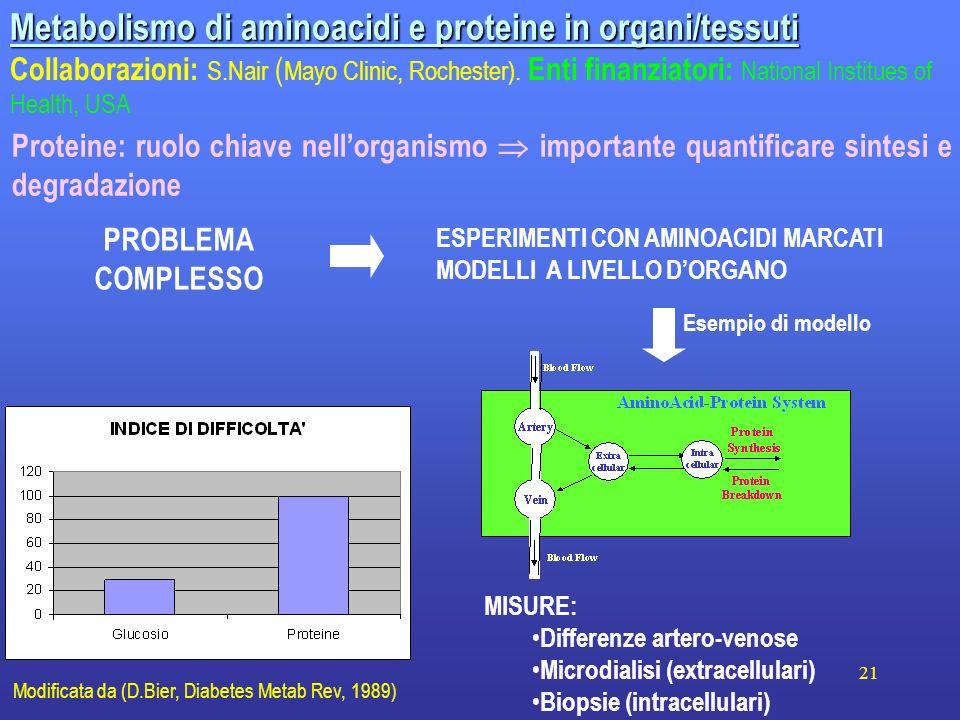 21 Metabolismo di aminoacidi e proteine in organi/tessuti Collaborazioni: S.Nair ( Mayo Clinic, Rochester). Enti finanziatori: National Institues of H