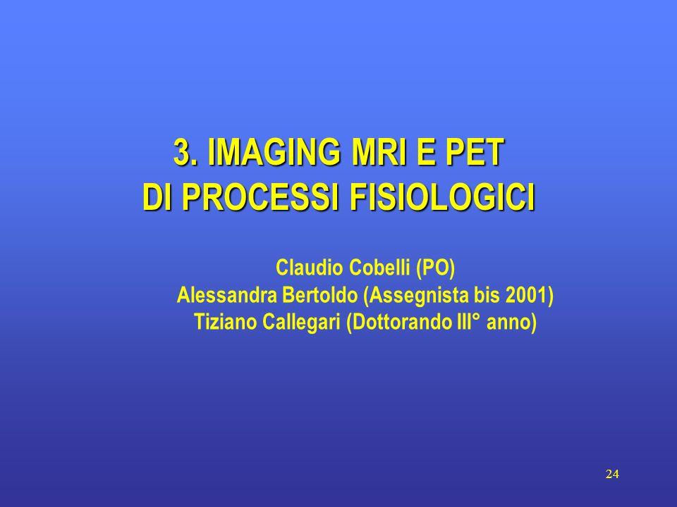24 3. IMAGING MRI E PET DI PROCESSI FISIOLOGICI Claudio Cobelli (PO) Alessandra Bertoldo (Assegnista bis 2001) Tiziano Callegari (Dottorando III° anno