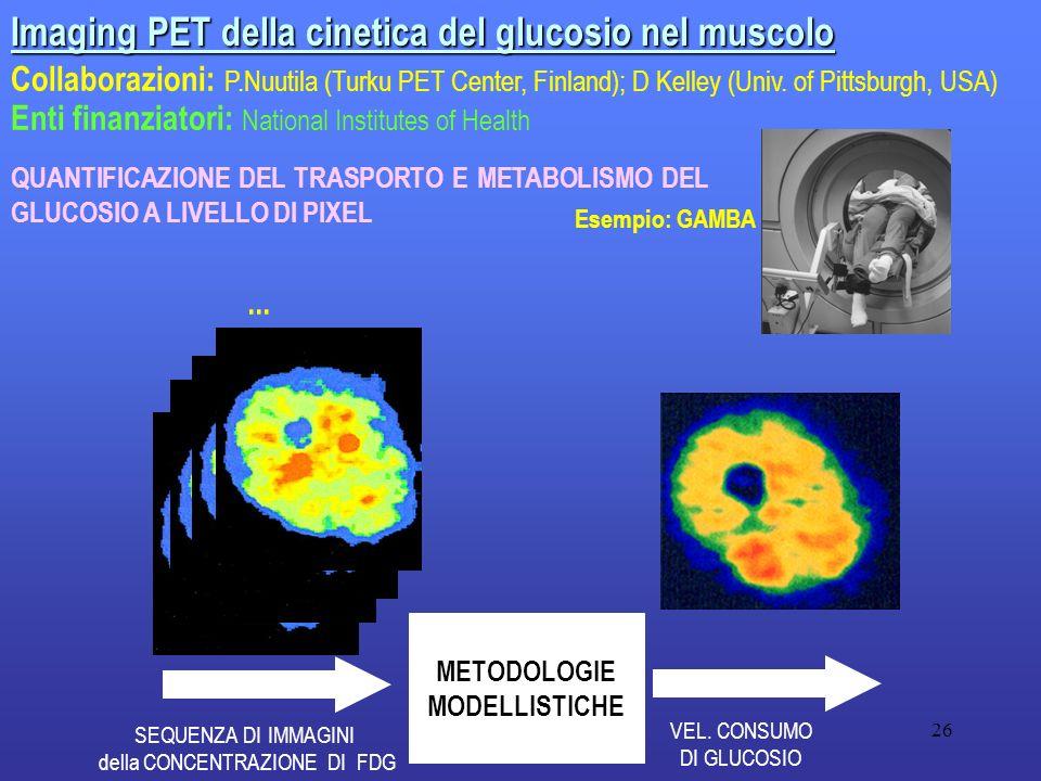 26 Imaging PET della cinetica del glucosio nel muscolo Collaborazioni: P.Nuutila (Turku PET Center, Finland); D Kelley (Univ. of Pittsburgh, USA) Enti