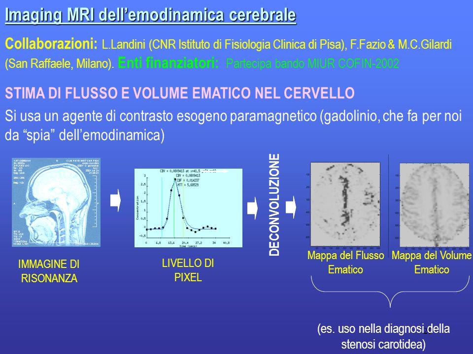 29 Imaging MRI dellemodinamica cerebrale Collaborazioni: L.Landini (CNR Istituto di Fisiologia Clinica di Pisa), F.Fazio & M.C.Gilardi (San Raffaele,