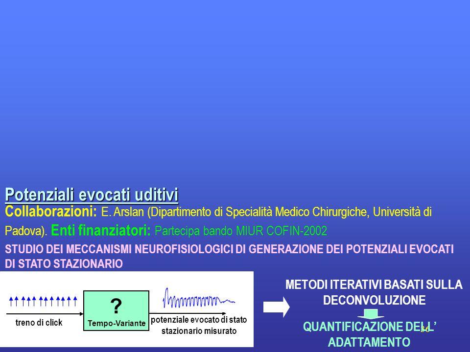 36 Collaborazioni: E. Arslan (Dipartimento di Specialità Medico Chirurgiche, Università di Padova). Enti finanziatori: Partecipa bando MIUR COFIN-2002