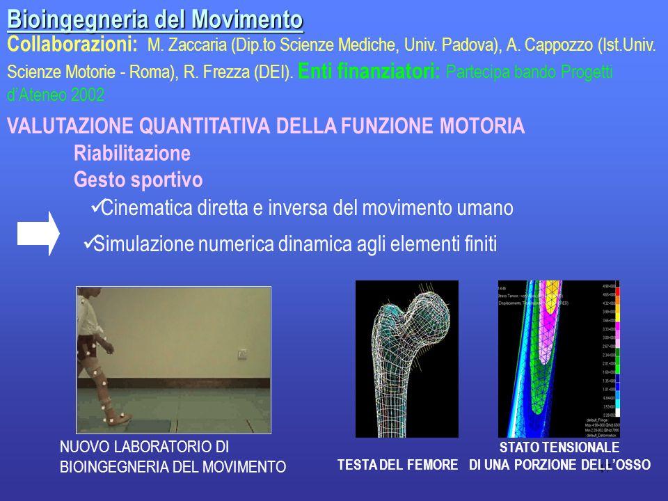 47 Bioingegneria del Movimento Collaborazioni: M. Zaccaria (Dip.to Scienze Mediche, Univ. Padova), A. Cappozzo (Ist.Univ. Scienze Motorie - Roma), R.