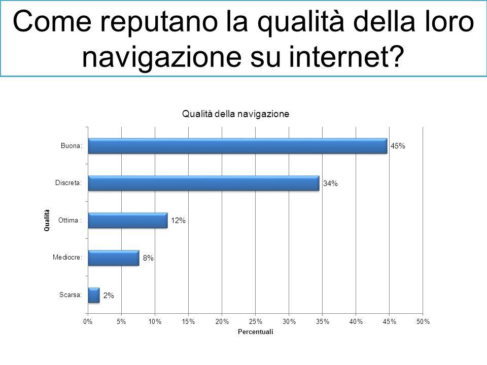 Come reputano la qualità della loro navigazione su internet?