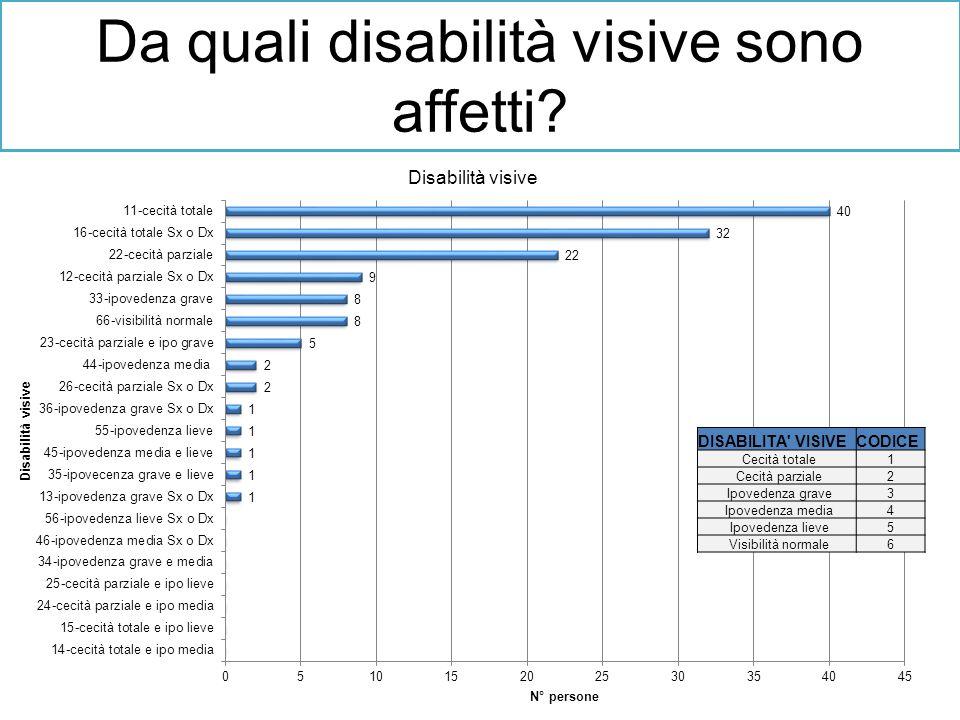 Da quali disabilità visive sono affetti? DISABILITA' VISIVECODICE Cecità totale1 Cecità parziale2 Ipovedenza grave3 Ipovedenza media4 Ipovedenza lieve