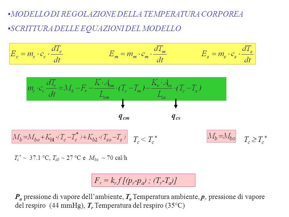MODELLO DI REGOLAZIONE DELLA TEMPERATURA CORPOREA SCRITTURA DELLE EQUAZIONI DEL MODELLO q cm q cs T c < T c * T c T c * T c * ~ 37.1 °C, T s0 ~ 27 °C