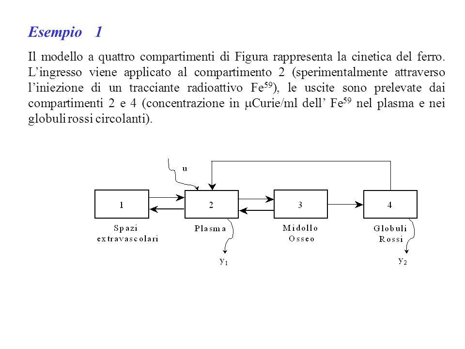 Esempio 1 Il modello a quattro compartimenti di Figura rappresenta la cinetica del ferro. Lingresso viene applicato al compartimento 2 (sperimentalmen
