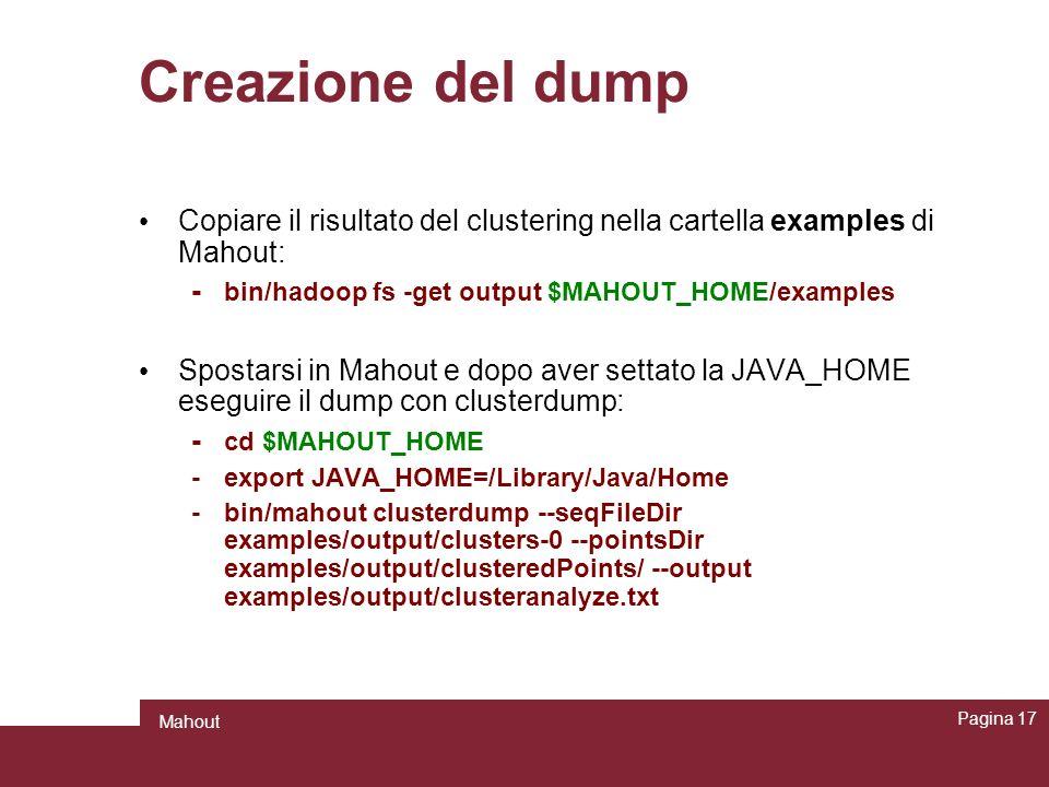 Creazione del dump Copiare il risultato del clustering nella cartella examples di Mahout: - bin/hadoop fs -get output $MAHOUT_HOME/examples Spostarsi