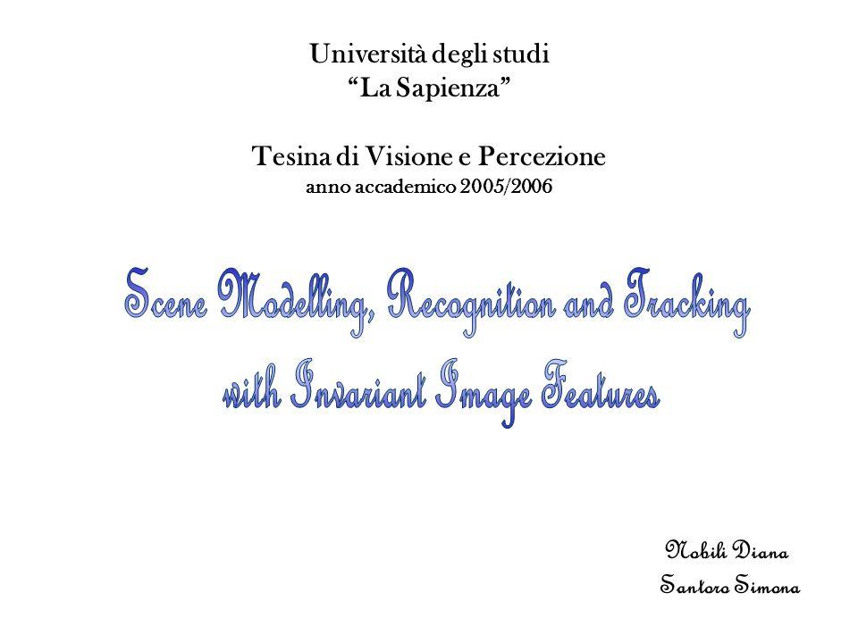 Università degli studi La Sapienza Tesina di Visione e Percezione anno accademico 2005/2006 Nobili Diana Santoro Simona
