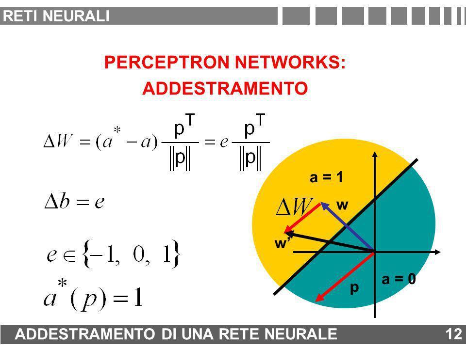 w PERCEPTRON NETWORKS: ADDESTRAMENTO a = 0 a = 1 p w 12 ADDESTRAMENTO DI UNA RETE NEURALE 12 RETI NEURALI