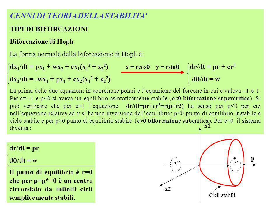 CENNI DI TEORIA DELLA STABILITA TIPI DI BIFORCAZIONI Biforcazione di Hoph La forma normale della biforcazione di Hoph è: dx 1 /dt = px 1 + wx 2 + cx 1