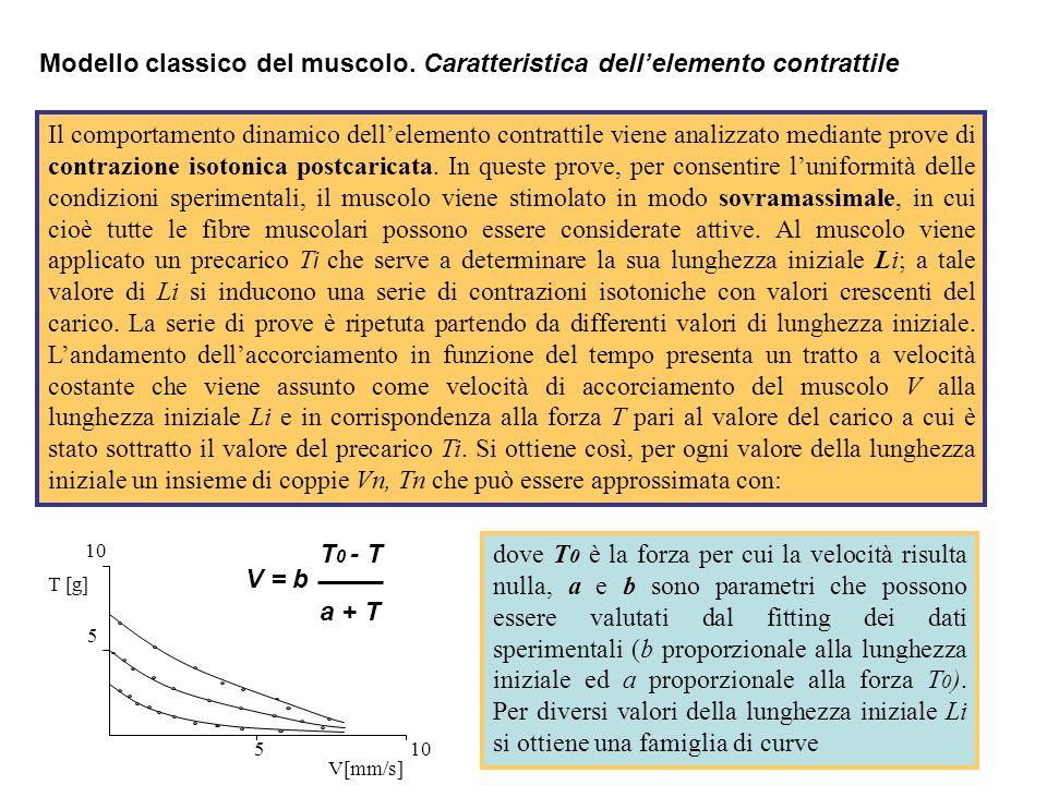 Un parallelo tra i due modelli può essere ottenuto considerando la figura dove =M-H=2C-I è larea di sovrapposizione tra i filamenti di actina e miosina.