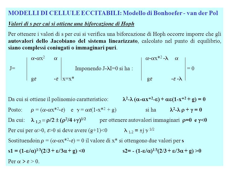 MODELLI DI CELLULE ECCITABILI: Modello di Bonhoefer - van der Pol Valori di s per cui si ottiene una biforcazione di Hoph In corrispondenza ai valori s1 ed s2 si ha: d /dt | s=s1 > 0 ed /dt | s=s2 < 0 Esistono quindi due biforcazioni di Hoph per s=s1 e s=s2 e il punto di equilibrio è instabile per s1<s<s2 e stabile esternamente per cui la biforcazione di Hoph è supercritica nellintervallo [s1 s2] dove gli equilibri sono cicli limite stabili e subcritica esternamente a tale intervallo in cui i cicli limite sono instabili.