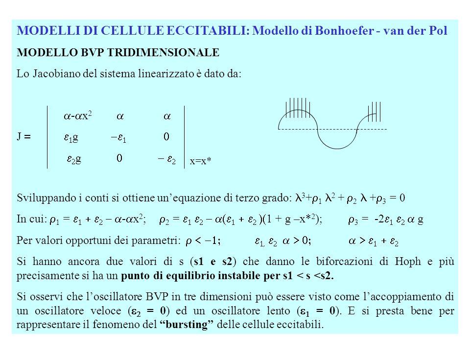 MODELLI DI CELLULE ECCITABILI: Modello di Bonhoefer - van der Pol MODELLO BVP TRIDIMENSIONALE Lo Jacobiano del sistema linearizzato è dato da: - x 2 J