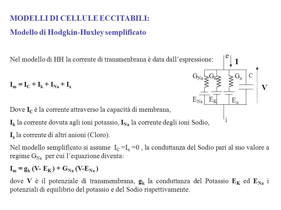 MODELLI DI CELLULE ECCITABILI: Modello di Hodgkin-Huxley semplificato Nel modello di HH la corrente di transmenbrana è data dallespressione: I m = I C