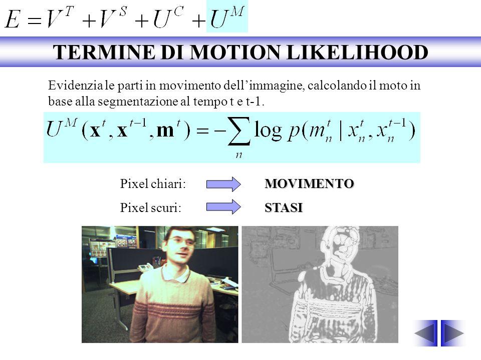 Evidenzia le parti in movimento dellimmagine, calcolando il moto in base alla segmentazione al tempo t e t-1. MOVIMENTO Pixel chiari:MOVIMENTO STASI P