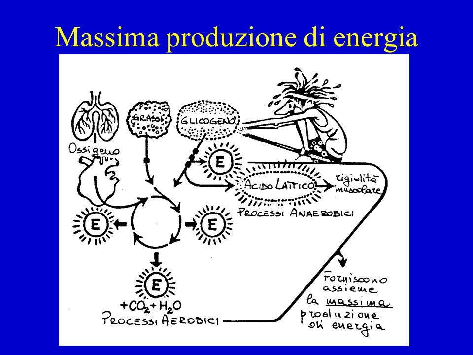 Massima produzione di energia